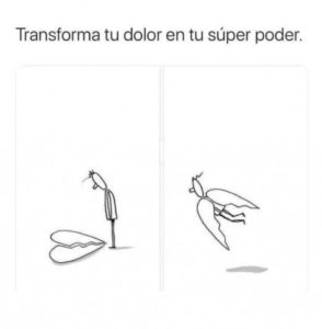 impara a volare.jpg